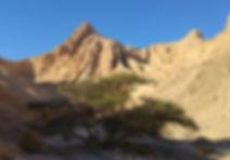 image_désert.jpg