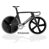 Bike-Track-Koga.jpg