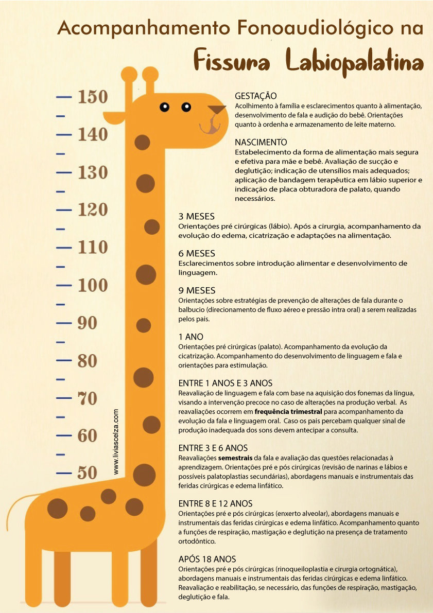 girafa-nova.jpg