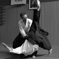 Un art martial Japonais