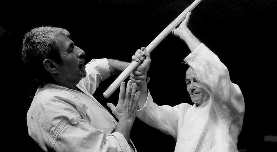 armes aikido