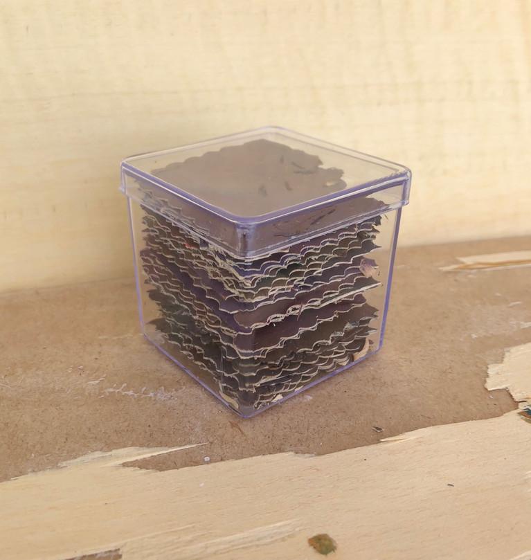 SOBREVIVI, pintura óleo em caixa de acrílico