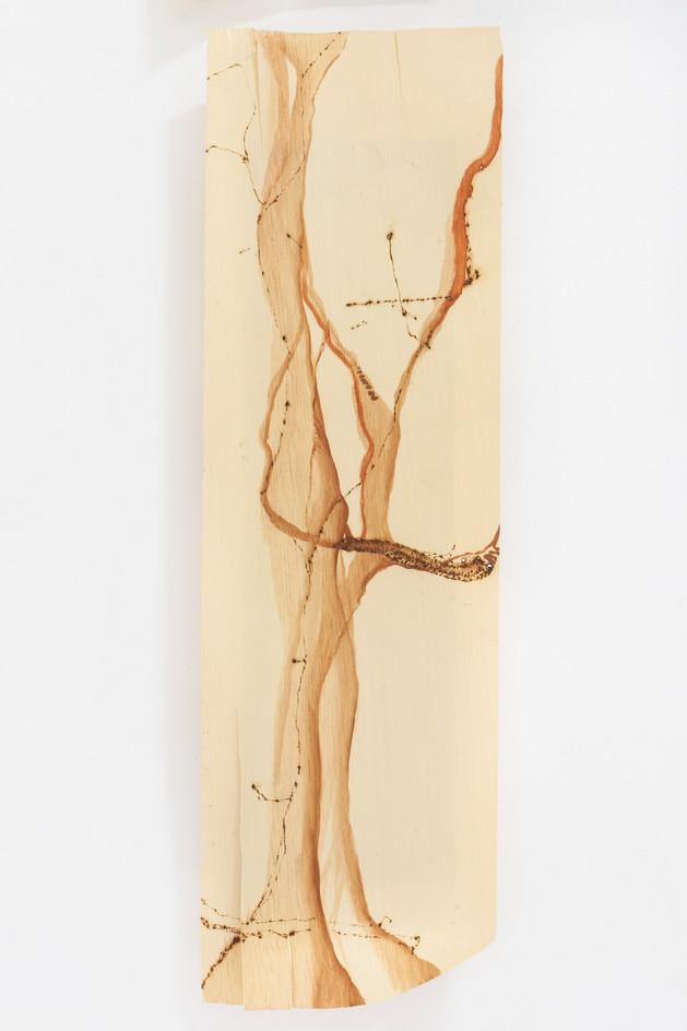 Sem titulo, Pirografia e pintura sobre folha de madeira
