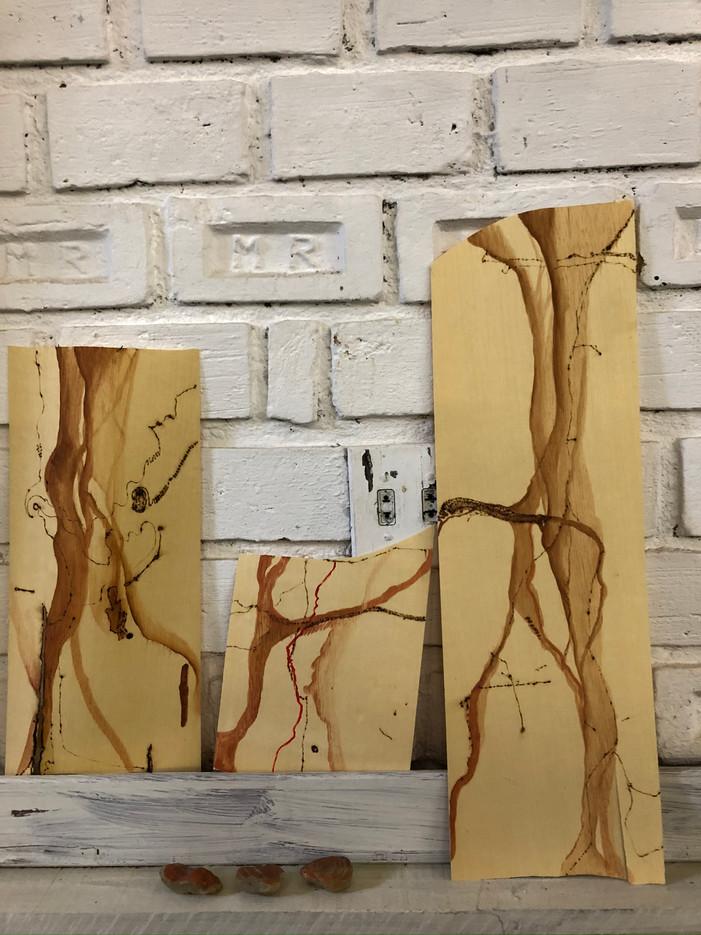 Pirografia e pintura sobre folha de madeira