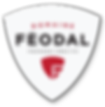 logo_domaine_feodal.png
