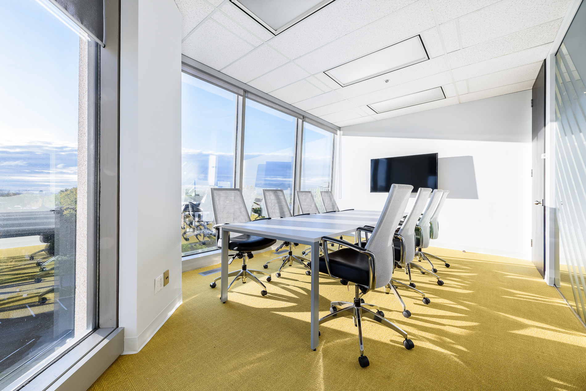 yellow carpet conference room