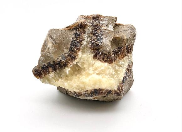 "Septarian / Large 1.5"", 51g / Dragon Stone"