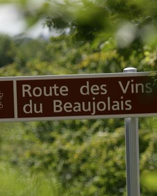 IB-5-DG-511-route-des-vins-Lachassagne-G