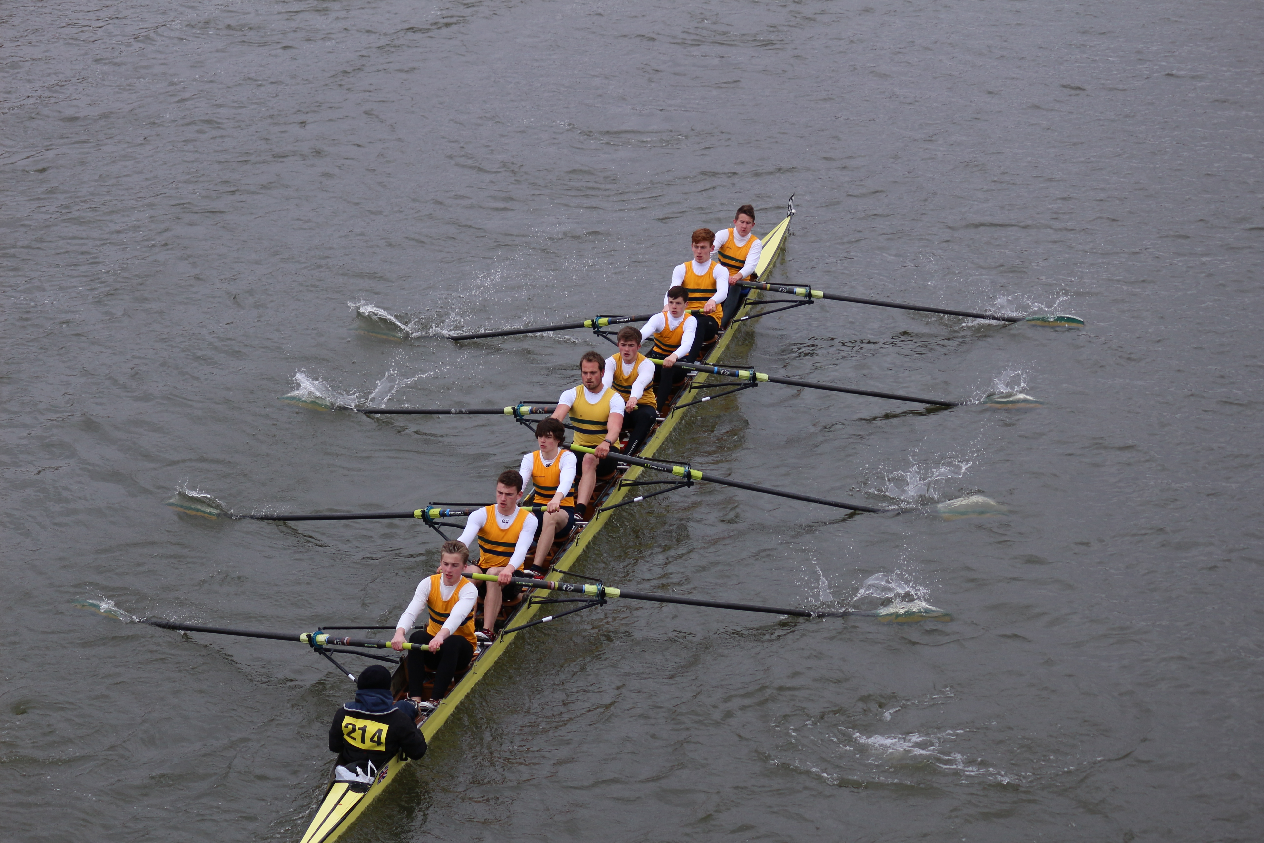 Head of River Race (Tideway)
