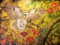 1 Owl State Fair Full