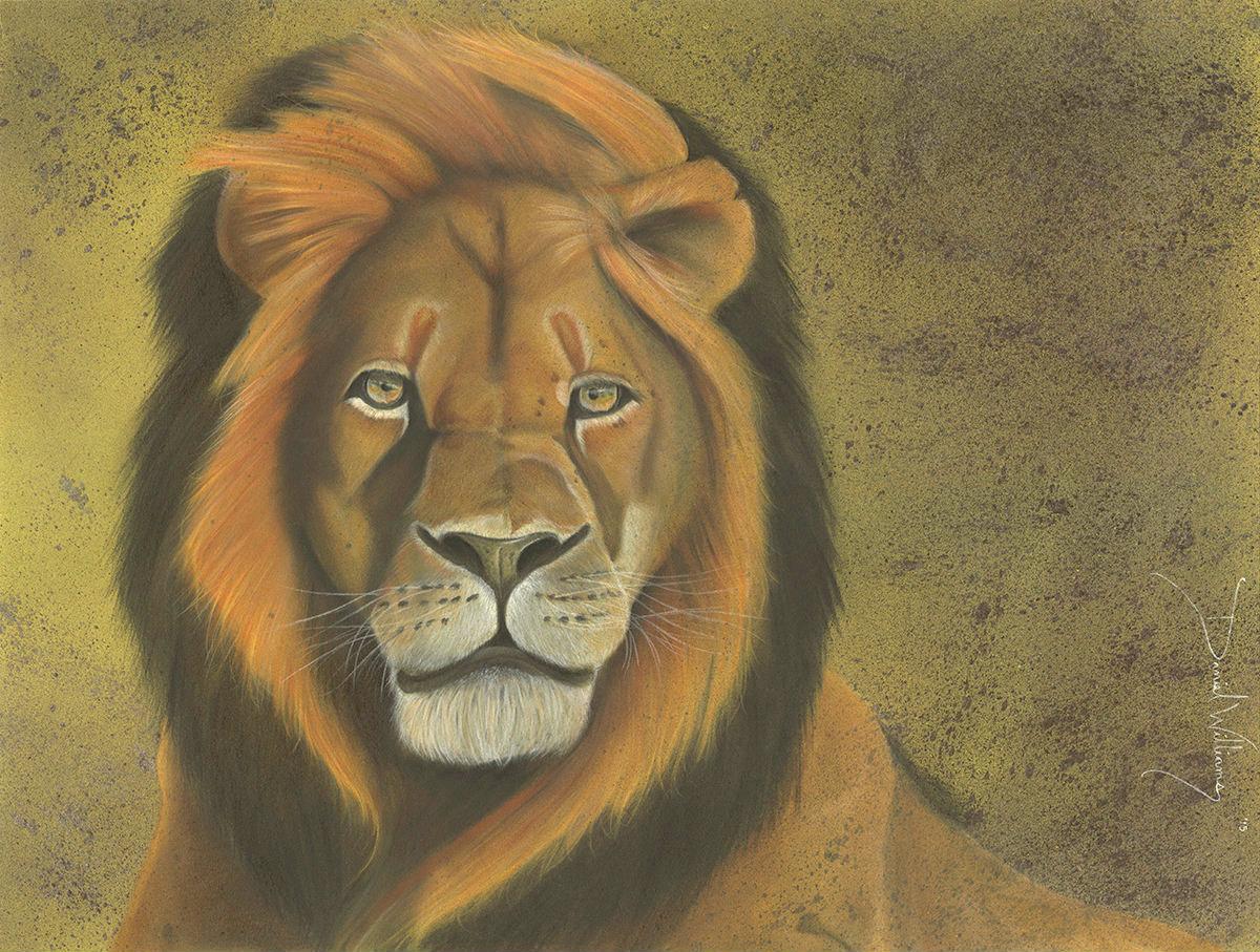 Lion Heart (1)