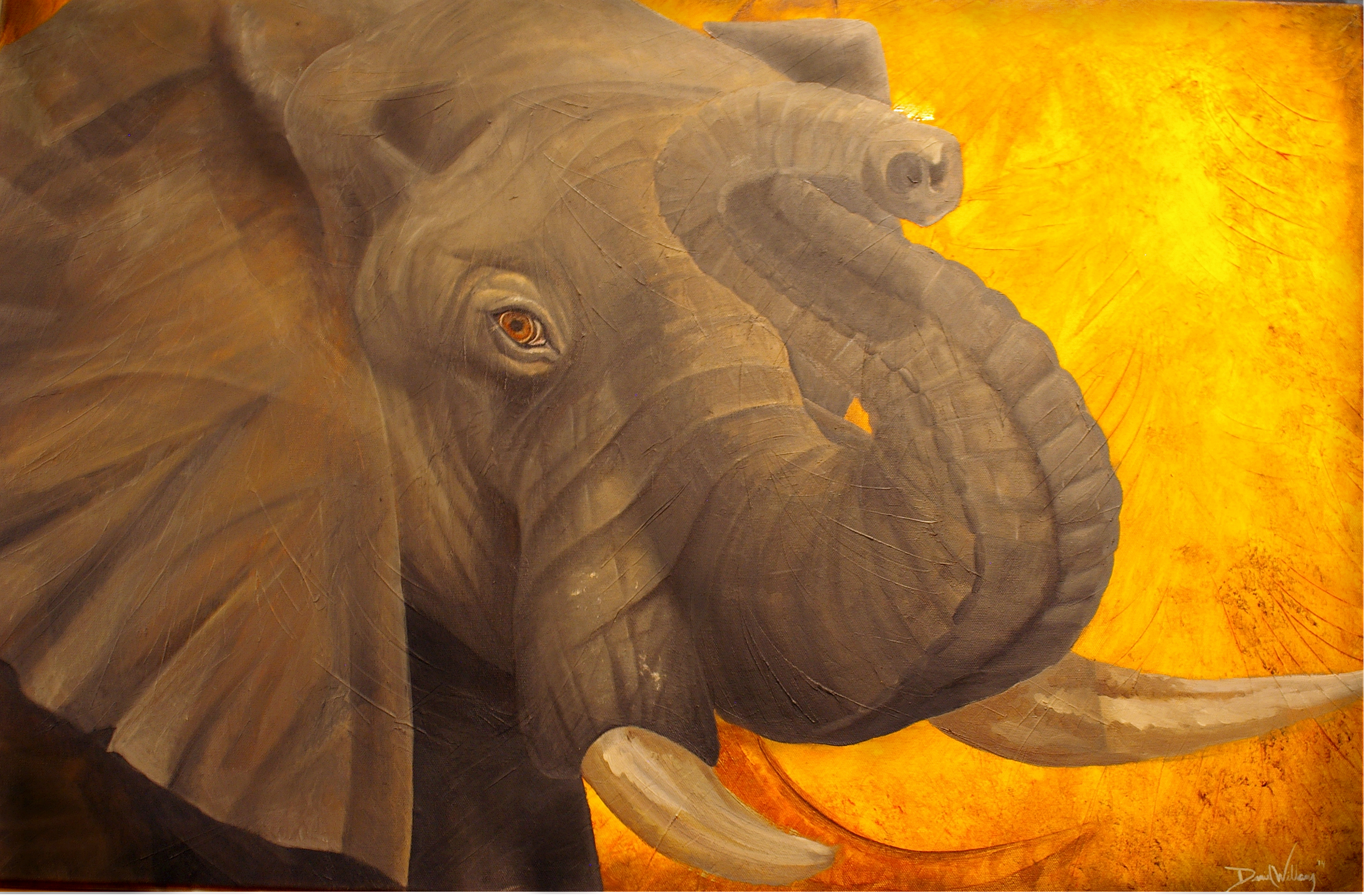 Elephant Oil  24 X 36 canvas
