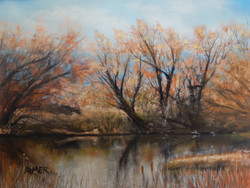 ALMER_Reflections of Spring