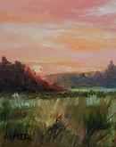 Daylight Meadow.jpg