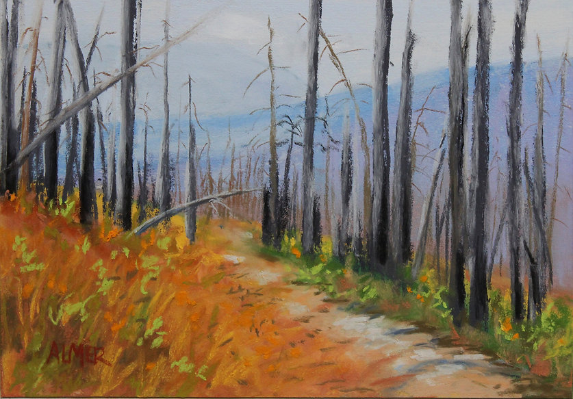 Bobbe paints images of western Montana and teaches art classes in Missoula