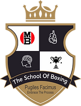 THE SCHOOL OF BOXING COLOR LOGO.png