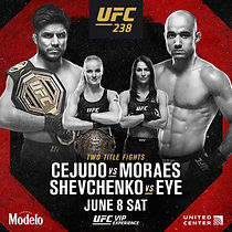 UFC 238.jpg