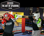 THE ART OF SPARRING PRODUCT COVER III.pn