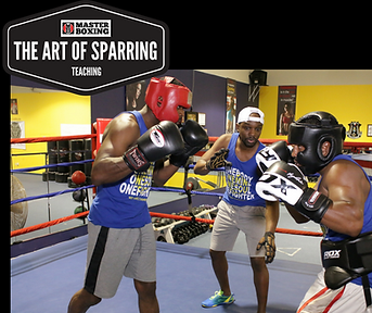 learn the art of sparring