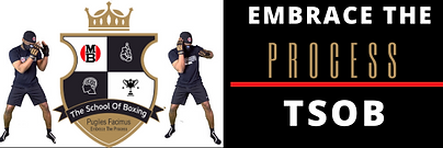 EMBRACE THE PROCESS THE SCHOOL OF BOXING