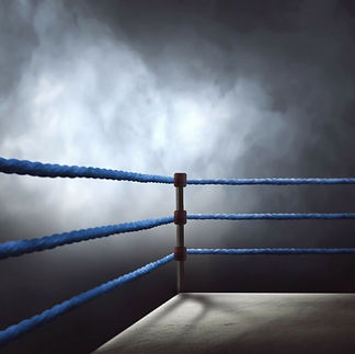 boxing ring 111.jpg