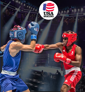 USA BOXING GOLDEN GOVES 2.png