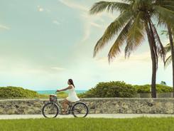 Personal Project • Miami