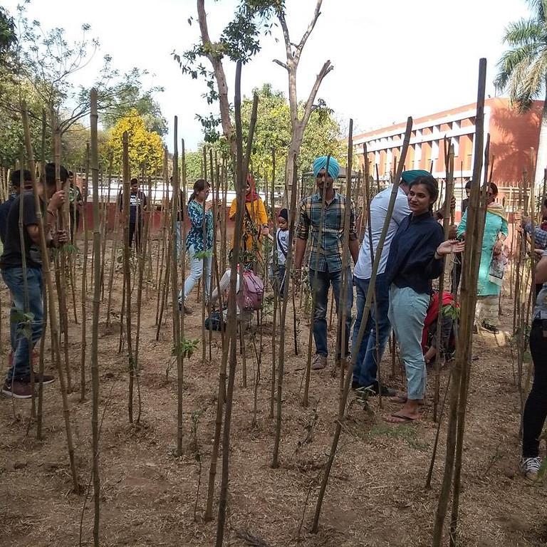 World Sikh Environmental Day