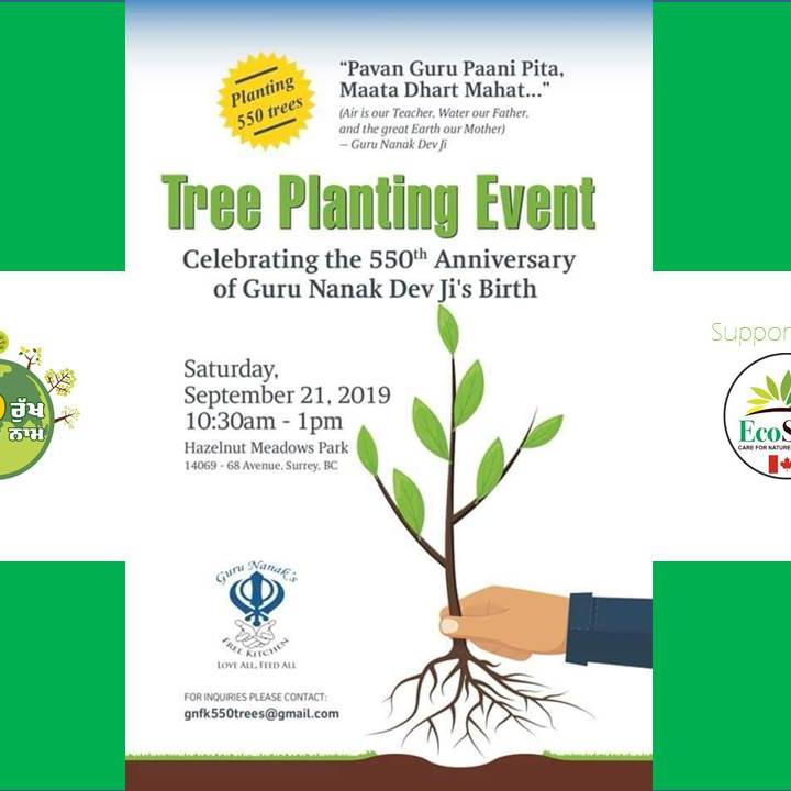 'Guru Nanak 550' Tree Planting Event - Surrey