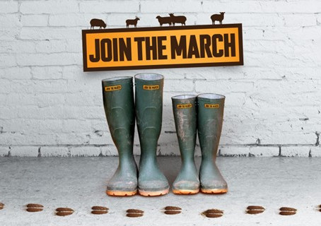 Join The March to Reduce Sheep Lameness