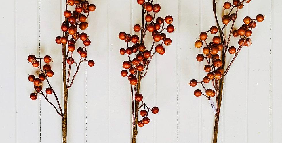 Fall Berry Stem