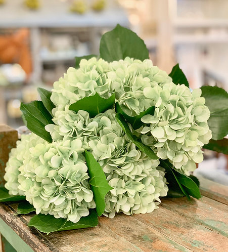 Faux Hydrangea Blooms (Sold Individually)
