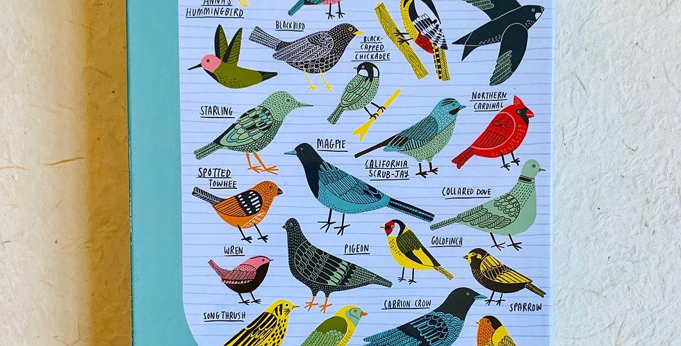 Bird School Puzzle