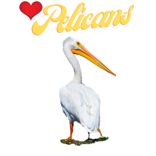 Love Pelican Products By Concetta Ellis