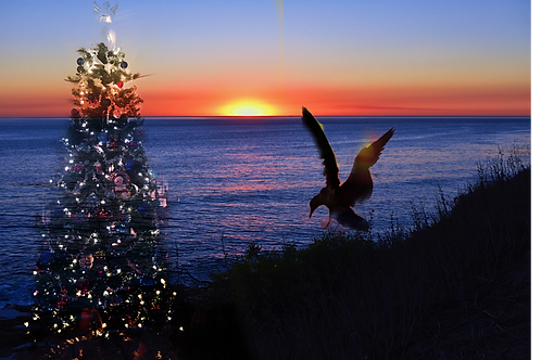 Brand New Christmas Card Designed By Concetta Ellis.  Sunset In San Pedro, Ca Includes The Seagull And Christmas Tree.