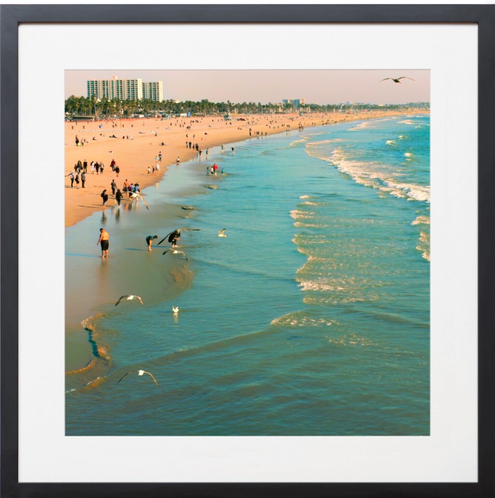 Santa Monica 01 Chester Frame Photography By Concetta Ellis