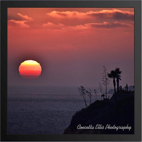Sunset 13 As Seen On KTLA News Photography By Concetta Ellis
