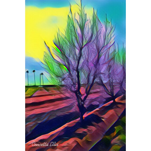 Note Card Botanical Tree Photo Art
