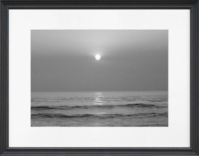Framed Swan Black And White Sunset
