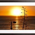 SUNSET ROYAL PALMS BEACH San Pedro, CA  Photography By