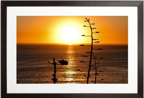 SUNSET ROYAL PALMS BEACH  San Pedro, CA Photography By Concetta Ellis