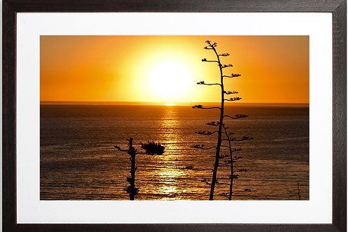 "SUNSET FRAMED PRINT ""70's Vibe"" Royal Palms San Pedro CA"