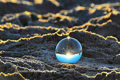 Note Card Glass Ball Sandy Beach Photography By Concetta Ellis
