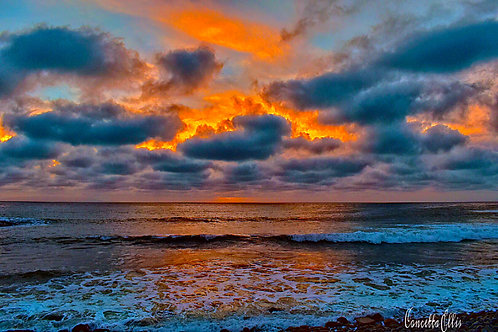 Note Card Sunset 14 San Pedro Photography By Concetta Ellis