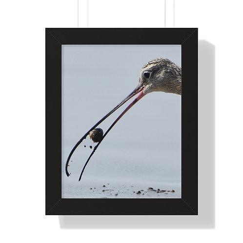 Sandpiper Bird   Framed Vertical Poster   Beach Print   Morro Bay, California  