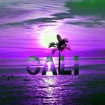 San Pedro California Royal Palms Purple