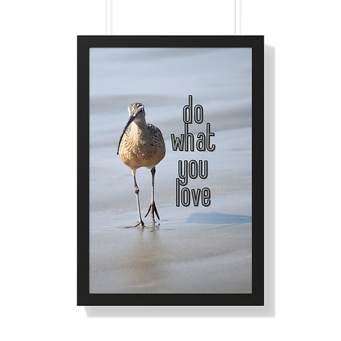 Framed Photography Of A Bird   Morro Bay, California   Poster   Life Quote