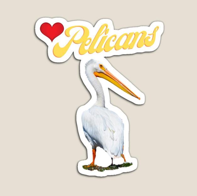 White Pelican Magnet Shop Redbubble I lo