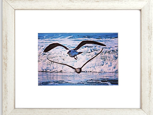 Framed Seagulls 02 Heart Photography By Concetta Ellis