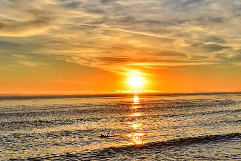 Note Card Sunset 36 Surfer San Pedro, CA Photography By Concetta Ellis